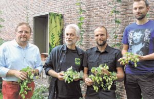The brewer (left) and the three teachers from Aalst who found the lost hop varieties. Source: Bierflash / De Streekkrant.