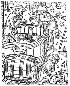 Once, Leuven and Hoegaarden were known for their wine. Source: Calendrier des Bergers, Troyes 1529